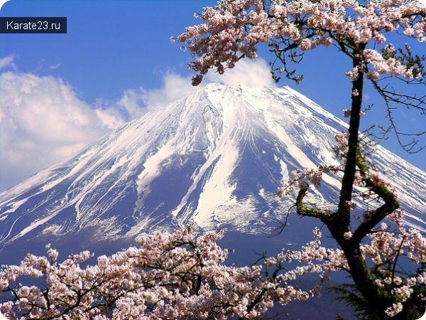 Япония этикет