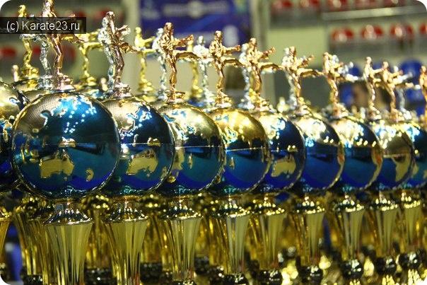 Турниры: Наши Чемпионы Первенства Южного Федерального округа по Киокусинкай каратэ в Краснодаре
