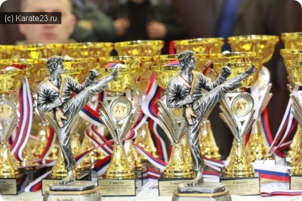 Турниры: Краевые соревнования по Киокусинкай каратэ в Афипской 27-28 февраля 2016 года