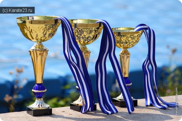 Турниры: ЮФО Краснодар Киокусинкай каратэ