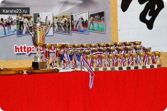 Соревнования каратэ Киокушинкай