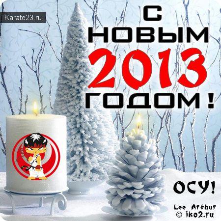 Каратэ Новый год 2013