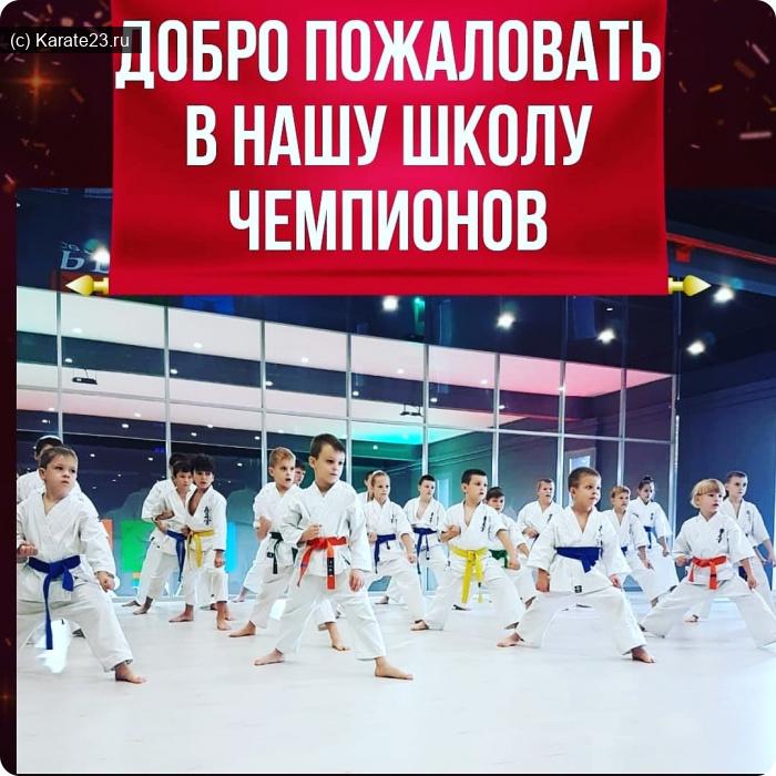 Спортивные клубы: Школа братьев алексанян