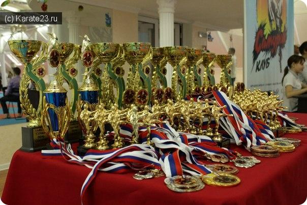 Турниры: 11 Открытый Кубок Самурая по Киокусинкай среди юношей, девушек, юниоров и юниорок c 12-17 лет 18 октября 2015 г.