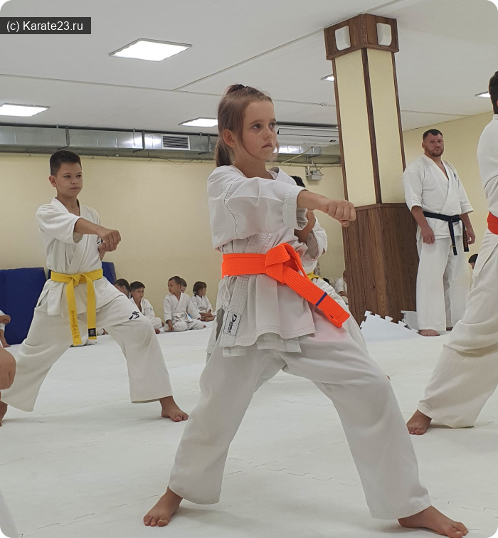 Блог тренера по каратэ детей с 3х лет в Анапе Солдатова Наталья Валентиновна: победы и поражения в каратэ